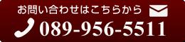 089-956-5511